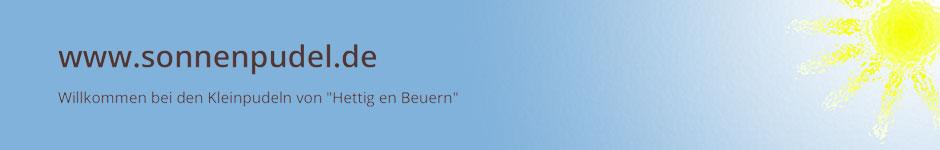 www.sonnenpudel.de