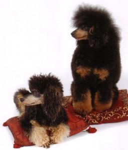 Biquette&Mowgli3d 12-12