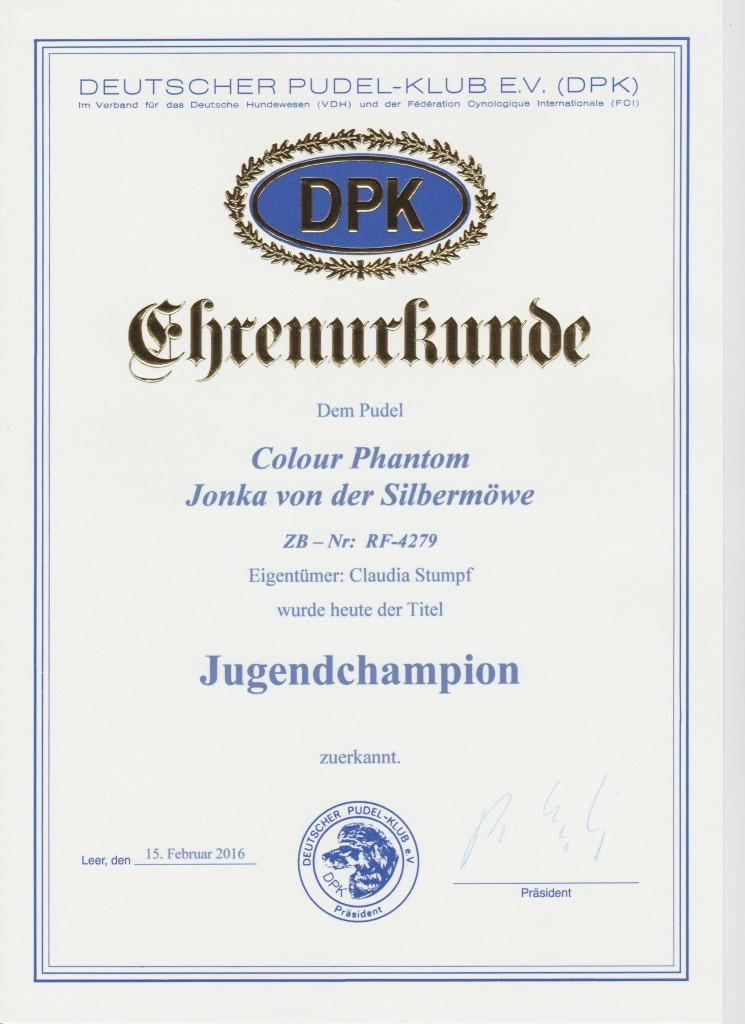Jonka DPK JgCh 001